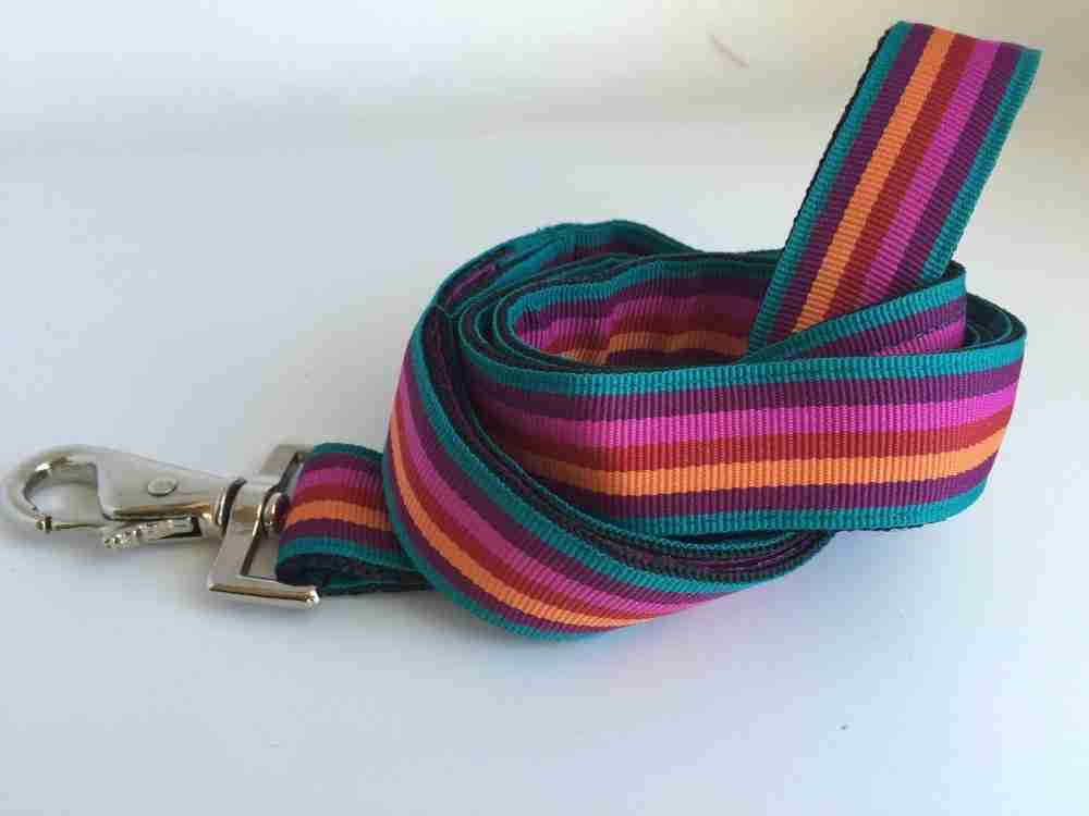 Scrufts' Brighton StripEd Dog Lead
