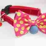 Scrufts' Mrs Punch Bow Wow Wow Tie Dog Collar