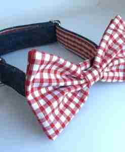 Scrufts' Bow Wow Wow Tie Dog Collar