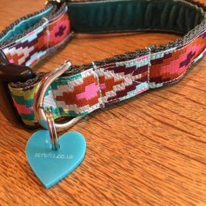 Scrufts Nevada Velvet Lined Dog Collar