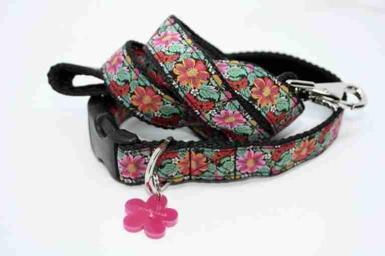 Scrufts' Frida K Floral Velvet Lined Dog Collar and Lead