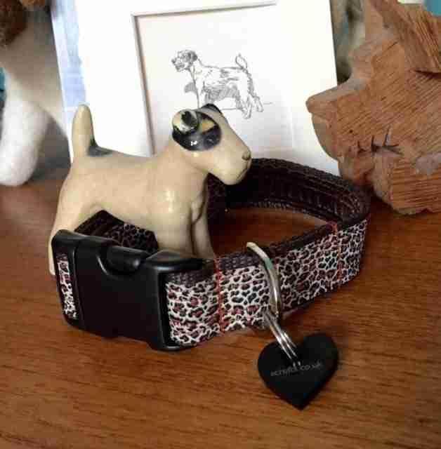 Scrufts' Rovers Return a Velvet Lined Dog Collar