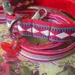 Scrufts' Fez Velvet Lined Harlequin Inspired Dog Collar and Lead