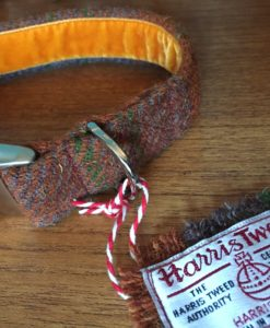 Scrufts Bruce Harris Tweed Velvet Lined Dog Collar