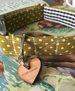 Scrufts' Kiwi Polka Dot Dog Collar