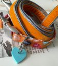 Scrufts' Mini Little Fern Velvet Lined Dog Collar and Orange Velvet Lead