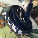 Scrufts' Little Bruno Velvet Lined Dog Collar and Lead