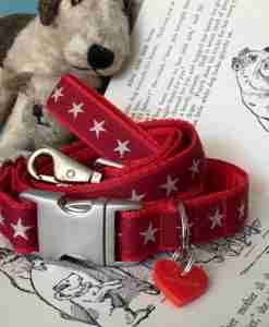 Scrufts Sirius Starry Velvet Lined Dog Collar and Lead Lead