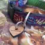 Scrufts' Woody Velvet Lined Dog Collar