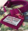 Scrufts Madge Fuscia Velvet Lined Harris Tweed Dog Collar