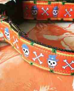 Halloween Dog Collar for Spooking !