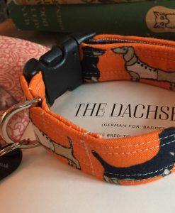 Scrufts' Daxi/Dachshund Dog Collar in Overtly Orange