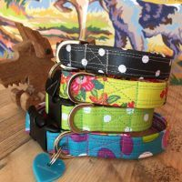 Scrufts' Mini Scrumptious Springtime Dog Collars