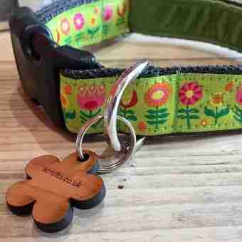 Scrufts' Tiny Garden Floral Velvet Lined Dog Collar in Lime