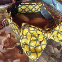 Scrufts' Max Mid Century Modern Geometric Velvet Lined Bow Tie Dog Collar