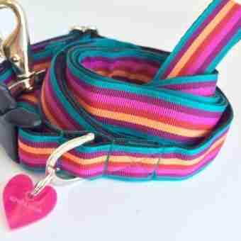 Scrufts' Brighton Stripe Dog Collar and Lead