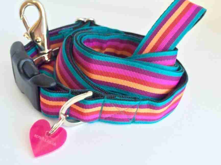 Scrufts' Brighton Stripe Dog Collar and Lead