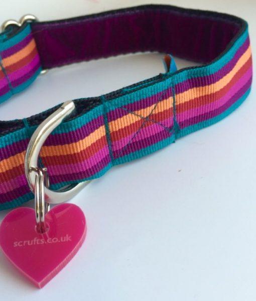 Scrufts' Brighton Stripe Dog Collar