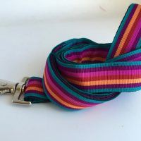 Scrufts' Brighton Stripe Dog Lead