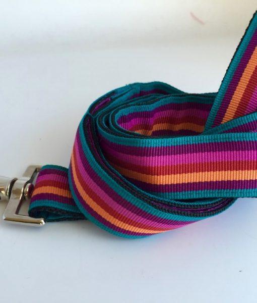 Scrufts' Brighton Stripe Dog Lead