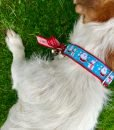 Christmas Dog Collar Santa Paws by Scrufts