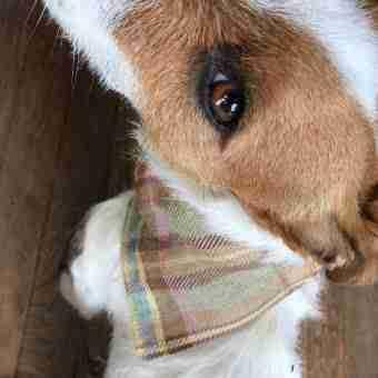 Irish Linen Handmade Dog Collar With Slip On Bandana