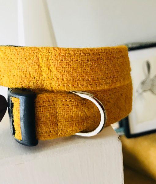 Scrufts' Sunny Velvet Lined Harris Tweed Dog Collar