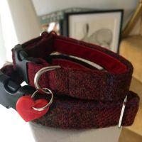 Scrufts' Berry Crumble Velvet Lined Harris Tweed Dog Collar