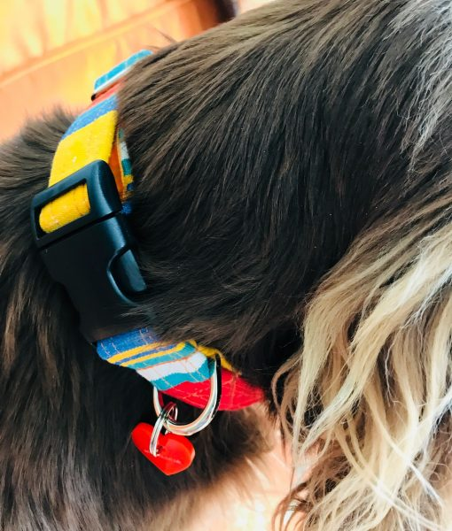 Scrufts' Whitstable Striped Velvet Lined Dog Collar