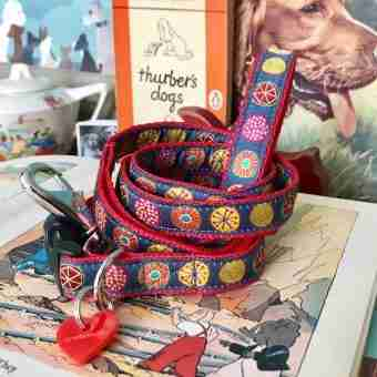 Scrufts' Little Oska Contemporary Dog Collar And Lead