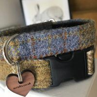 Scrufts' Spitfire Harris Tweed Velvet Lined Dog Collar
