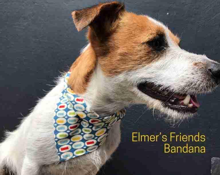 Elmer's Chums Reversible Dog Bandana