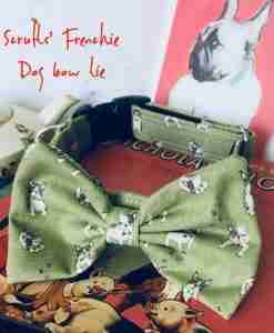 Scrufts' Frenchie Dog Bow Tie Collar
