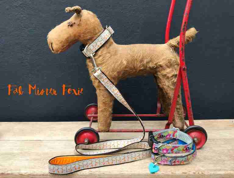 Mister Foxie Dog Collar and Lead
