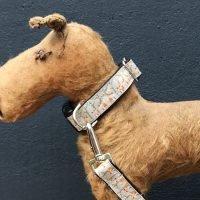 Mister Foxie Dog Collar