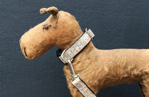 Mister Foxie Dog Collar