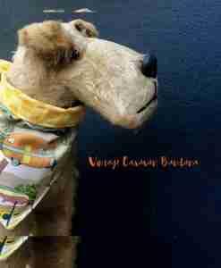 Scrufts' Vintage Caravan Dog Bandana