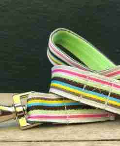 Scrufts' Neapolitan Striped Dog Lead