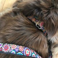 Scrufts Mila Dog Collar and Lead