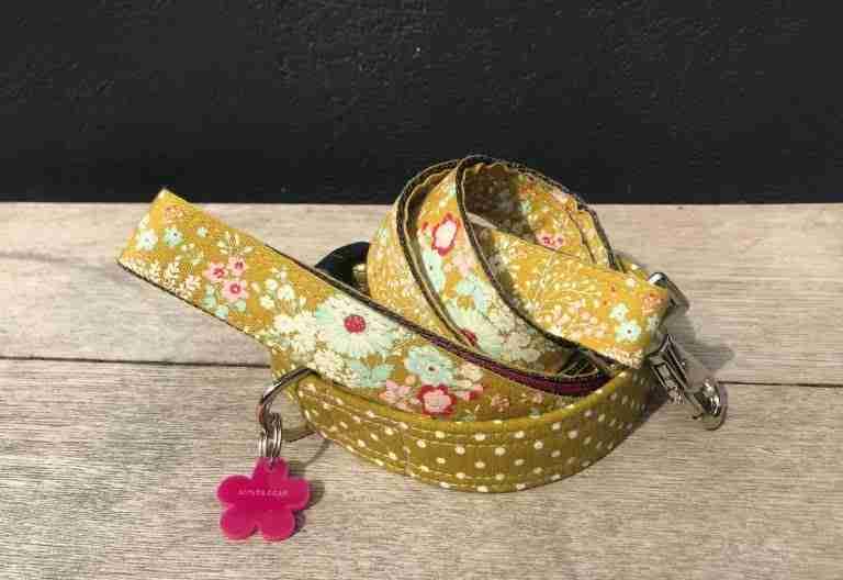Scrufts Kiwi Polka Dot Dog Collar And Floral Lead