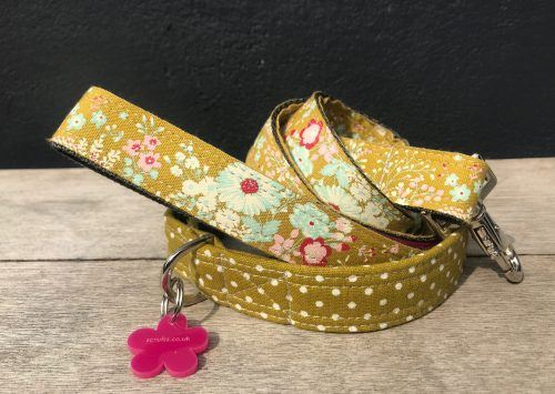 Scrufts Kiwi Polka Dot Dog Collar And Floral Lead