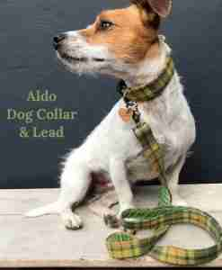 Scrufts Aldo Tweed Dog Collar and Lead