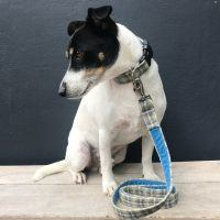 Scrufts Harvest Donegal Tweed Dog Collar and Lead