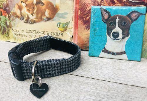 Scrufts Billy Boy Grey Tweed Dog Collar with Velvet Lining