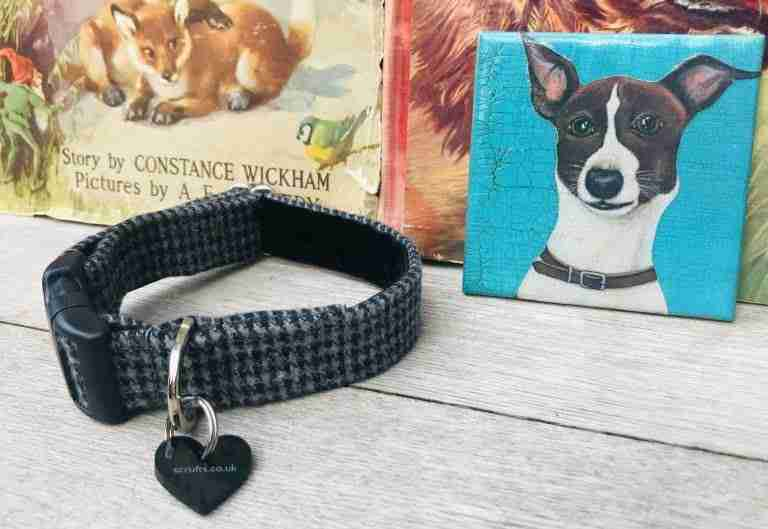 Scrufts Billy Boy Grey Tweed Dog Collar with Velvet Lining