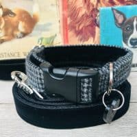 Scrufts Billy Boy Grey Tweed Dog Collar with Black Velvet Lead
