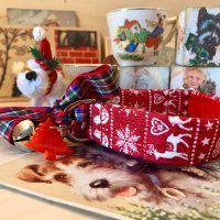 Scrufts Prancer Velvet Lined Christmas Dog Collar