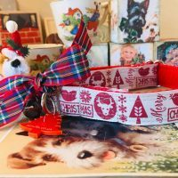 Scrufts' Dasher Christmas Dog Collar with Velvet Lining