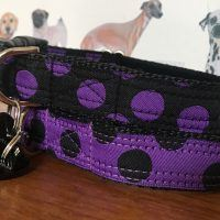 Scrufts Charleston Black & Purple or Purple & Black Polka Dot Dog Collar