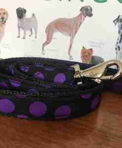 Scrufts Charleston Black & Purple or Purple & Black Polka Dot Dog Lead
